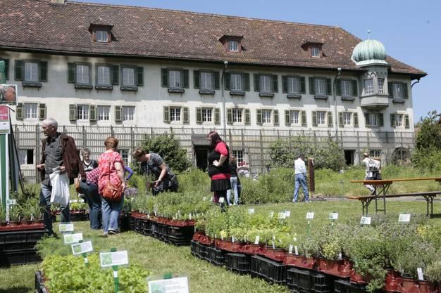 Im Sommer wurde der Garten für die Authentica genutzt
