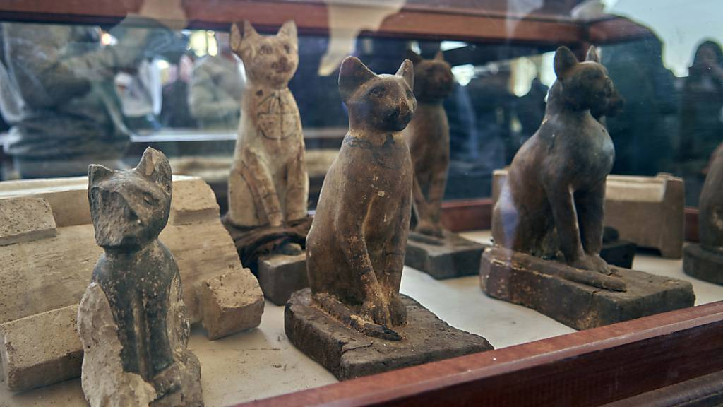 Statuen und mumifizierte Löwenbabys in ägyptischer Totenstadt