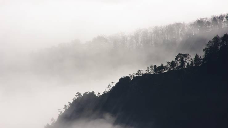 Blick vom Balmberg auf die Nebelgrenze (19.11.2012)