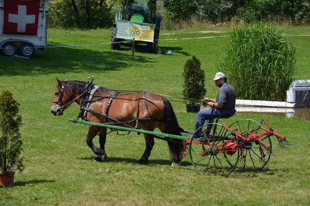 Das waren noch Zeiten: Am Erlebnistag wird auch ein von einem Pferd gezogener Heuwender gezeigt