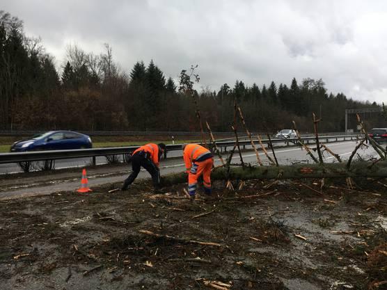 Umgewehte Bäume blockierten etliche Strassen, darunter die A1. Eine Person wurde verletzt.