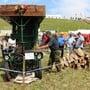Landmaschinen-Oldtimer-Treffen