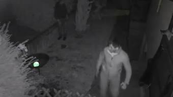 Tele M1 berichtete über den Fall vom 3. November: In Wohlen konnten Ganoven ein Haus ausräumen, trotz der vier Hunden.