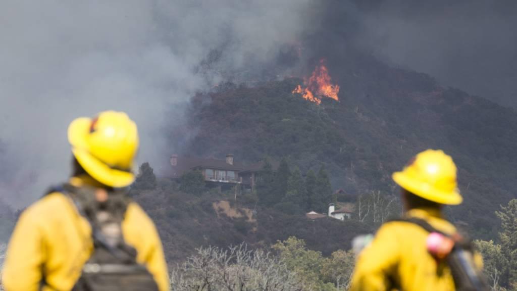 Feuerwehrleute beobachten einen Waldbrand. Foto: Ringo H.W. Chiu/AP/dpa