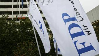 Die FDP wählt am 24. Oktober einen neuen Präsidenten.