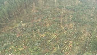 Nach dem Sturm, der grosse Waldstücke umgefegt hat, zeigt sich das wahre Ausmass der Zerstörung erst von oben.