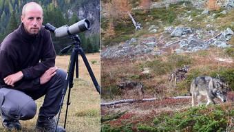Für David Gerke, Präsident Gruppe Wolf Schweiz, war im letzten Jahr in der Regel einmal pro Woche im Augstbord-Gebiet unterwegs. Einmal hat er die Wölfe live gesehen.