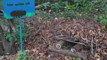 Igelburg-Kurs Chrüzacher Dietikon