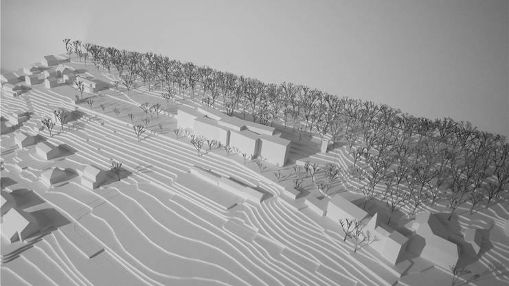 Gipsmodell des Bauvorhabens: Auf der freien Fläche links des Neubaus befindet sich das jetzige Gebäude. Direkt unterhalb des Neubaus steht die Gärtnerei.