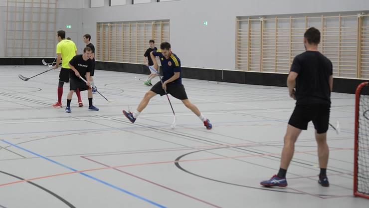 Captain und «Sommertrainer» Andris Ladner (am Ball) und Ex-Trainer Michael Hunziker (links) haben Spass am Training. msu