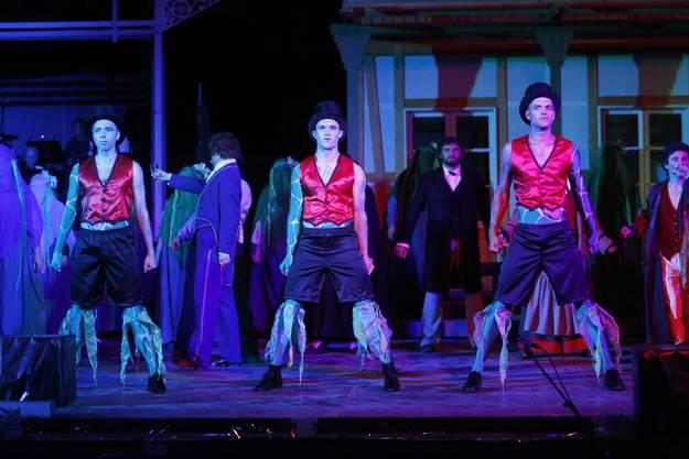 Musical «Die grüne Fee» im Mösli in Deitingen