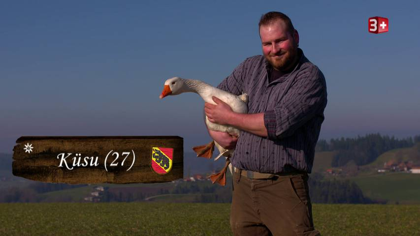 Bauer, ledig, sucht... ST16 - Portrait Küsu 28 (BE)