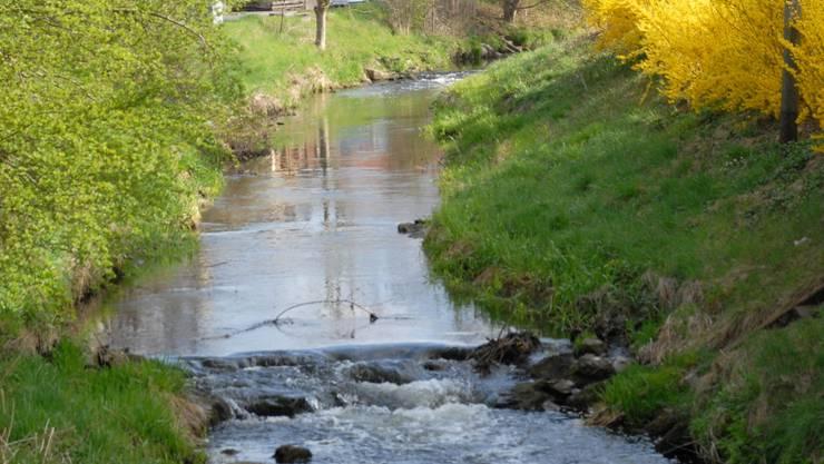 Kleine Gewässer wie der Furtbach weisen viele giftige Rückstände von Pflanzenschutzmitteln auf.  walter schwager