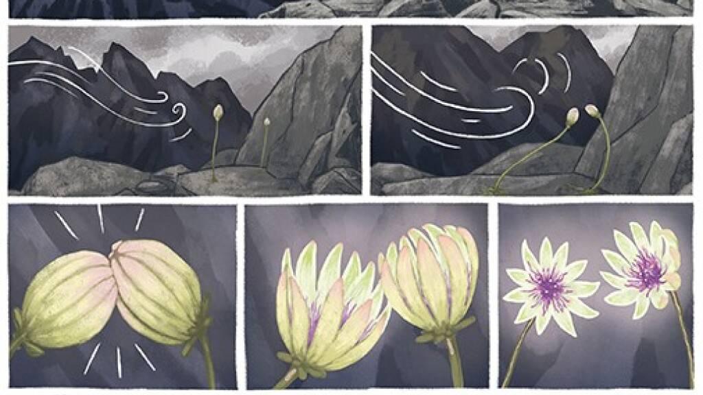 Ein Bildband der Genfer Künstlerin Léonie Bischoff über das Leben der amerikanischen Schriftstellerin Anaïs Nin wurde als bestes Schweizer Comic-Album 2021 ausgezeichnet.