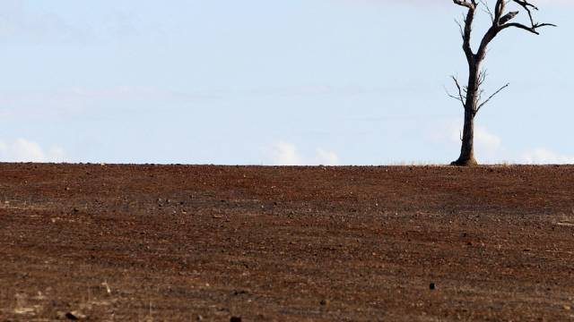 Dürre in Australien (Archivbild)