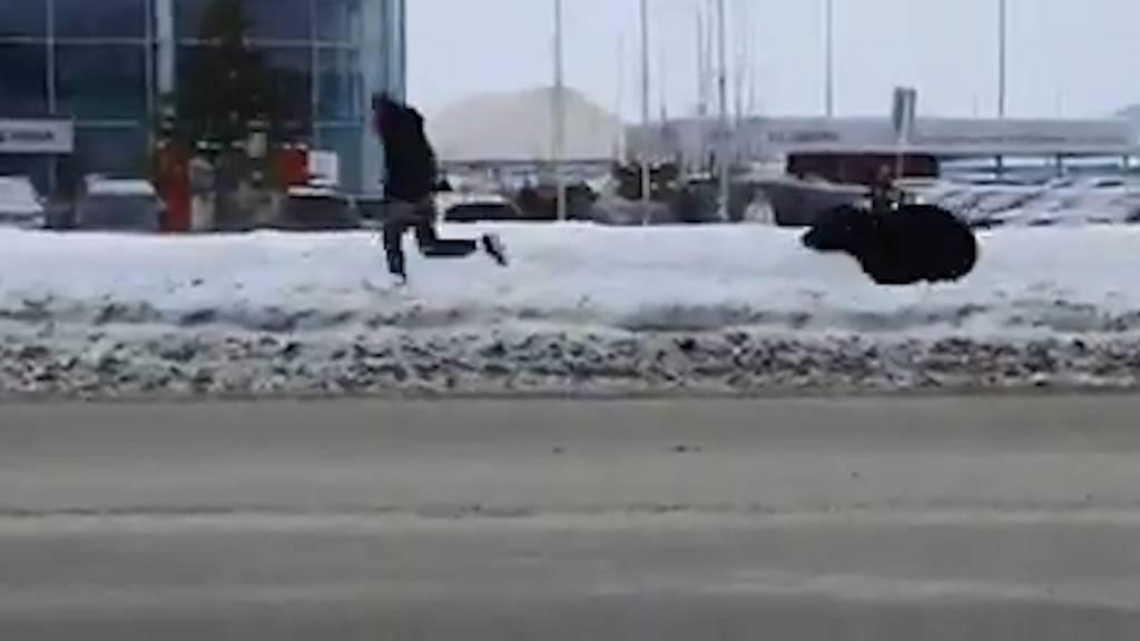 Bär verfolgt Mann und wird von Bus angefahren