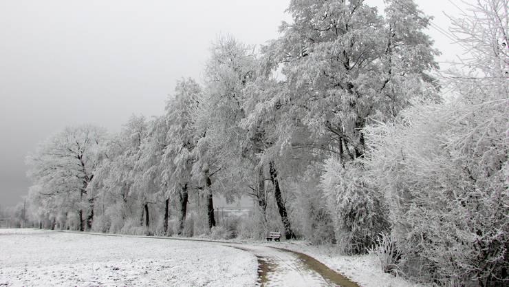 Winterzauber am Grüttbach !