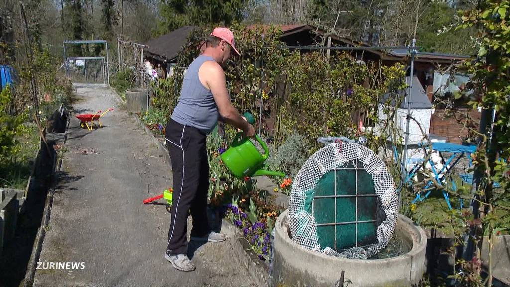 Schrebergärten gewinnen durch Corona-Krise an Beliebtheit