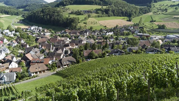 ch media Leserwanderung von Maisprach BL über den Sonnenberg nach Rheinfelden AG