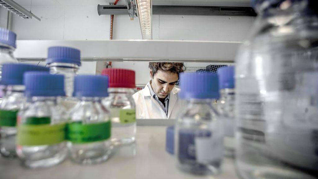 Gen weist auf bessere Überlebenschancen bei Prostatakrebs hin