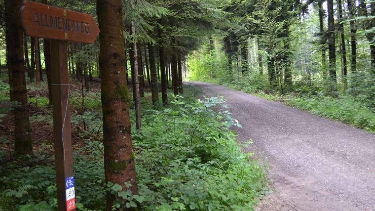 Beim Allmendweg, unweit der Kantonsgrenze, hätte der von den Initianten vorgesehene Bikepfad die Waldstrasse überquert.