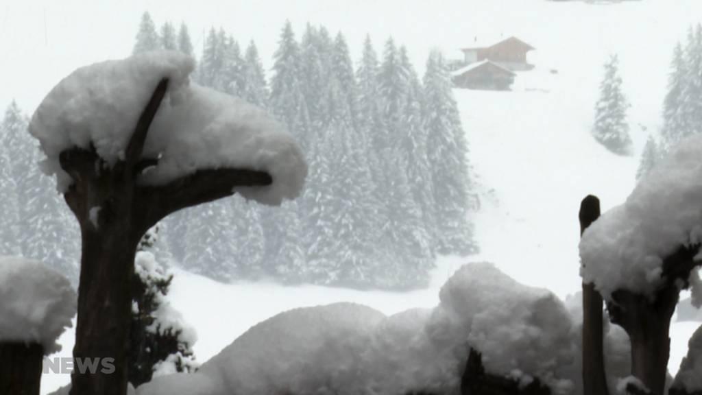 Winterlandschaft: Schnee im Berner Oberland