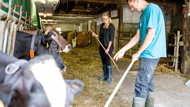 Der Bergdietiker Bauer Milan Schenkel zeigt, wie man den Kühen das Silofutter verteilt.