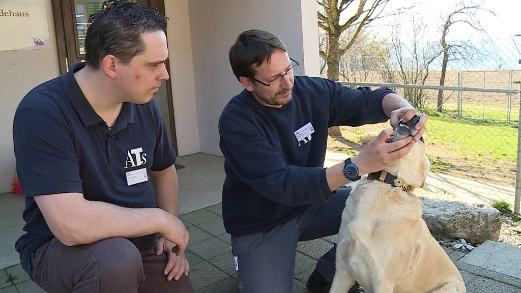 Tierpfleger