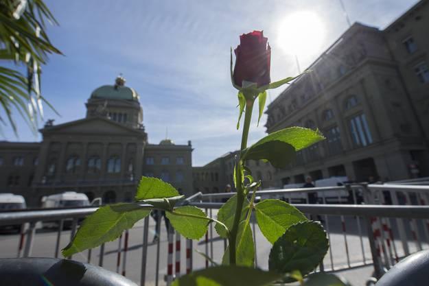 Eine an Abschrankung des von Polizisten abgesperrten Bundesplatzes befestigte Rose.