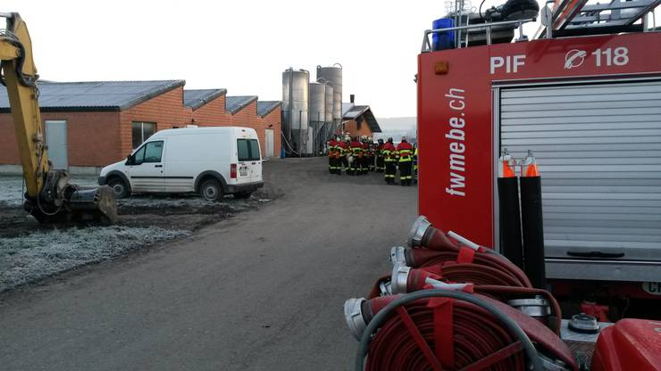 Um 6.30 Uhr am Mittwoch bemerkten die Bewohner des Riedhofs dichten Rauch im Schweinestall.