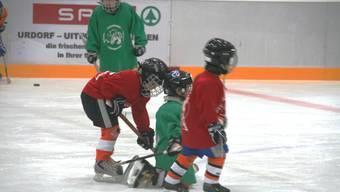 Der Limmattaler Eishockey-Nachwuchs treiniert auf der Kunsteisbahn Weihermatt