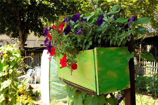 Ein Meister im Wiederverwerten – selbstgezimmerte Blumenkistli.