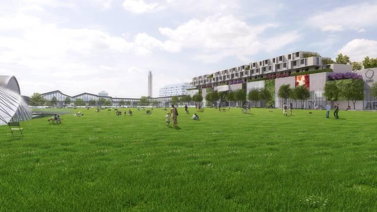 Die neue Grünfläche des Central Parks Basel soll gleichzeitig als Lebensraum dienen und Stadt und Geleise besser erschliessen.