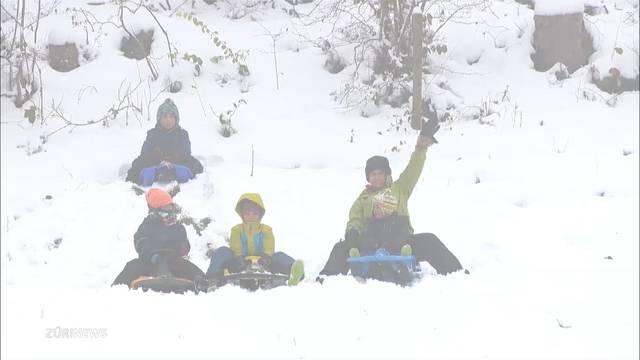 Schneespass nun auch im Zürcher Oberland