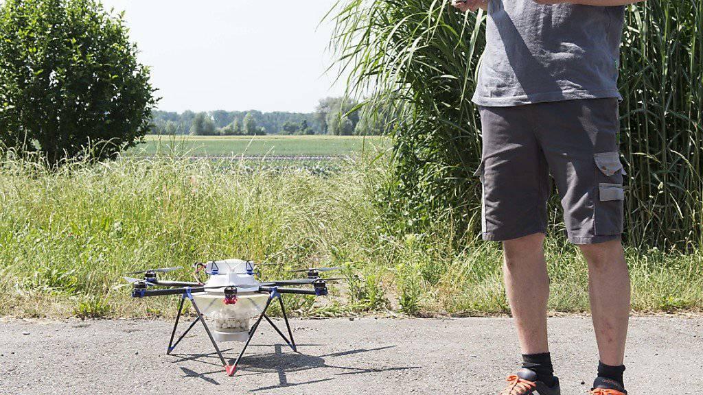 Wer seine Drohne ausleiht, muss den Drohnenpiloten entsprechend schulen, um im Schadensfall nicht in Schwierigkeiten zu geraten. (Symbolbild)