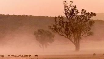 Unwirtliche Gegend - das australische Outback (Archiv)