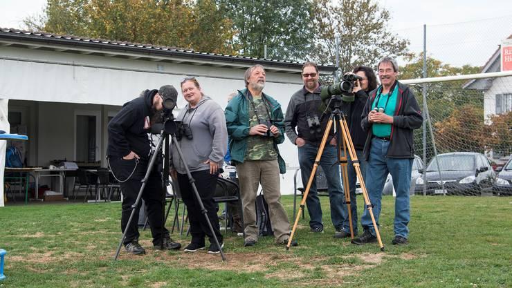 Jeweils am ersten Oktoberwochenende zählt auch der Natur- und Vogelschutzverein in Halten die Zugvögel am Himmel.