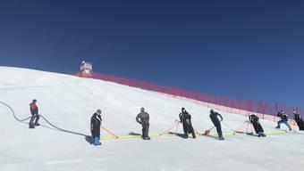 Solothurner Voluntari an der WM in St.Moritz