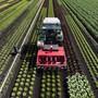 Die Skepsis in der Landwirtschaft am Freihandelsabkommen mit den Mercosur-Staaten ist gross.