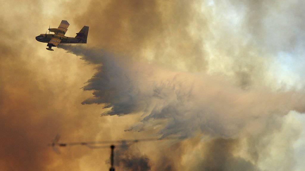 In Portugal sind am Montag neue Waldbrände aufgeflammt. Vor zwei Wochen starben bei der Ortschaft Pedrógão Grande wegen einer Feuersbrunst 64 Menschen. (Archivbild)