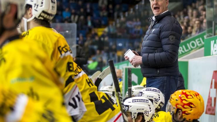Cheftrainer Kari Jalonen führt den SC Bern zum Sieg in der Qualifikation