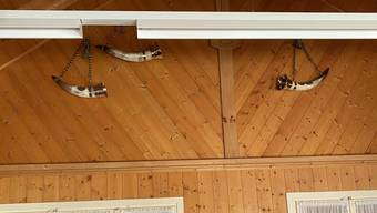 Leere Trophäenwand: drei von 15 Trinkhörnern hat die Täterschaft  im Hornusserhüttli zurückgelassen.