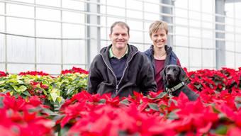 In der Gärtnerei Huplant produziert die Familie Huber nur noch mit torffreier Erde