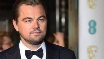 Geschäftsreise nach Hollywood-Art: Leonardo DiCaprio hat mit seinen Kollegen Adrien Brody und Fisher Stevens eine Affen-Auffangstation in Indonesien besucht. (Archiv)