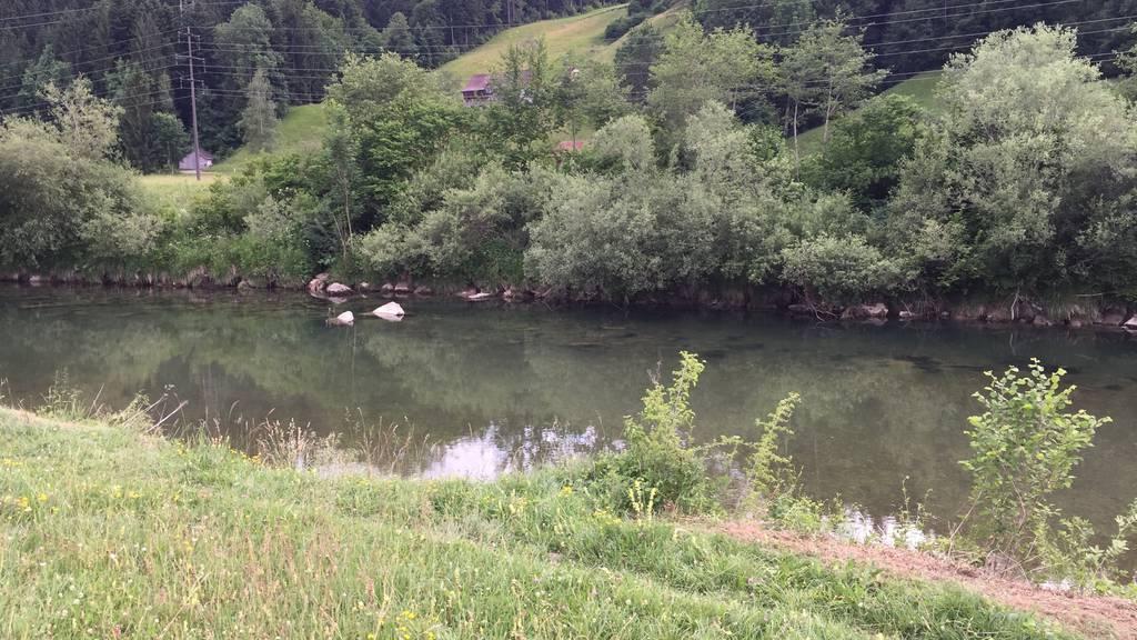 Die Thur soll in und um Wattwil verbreitert werden.