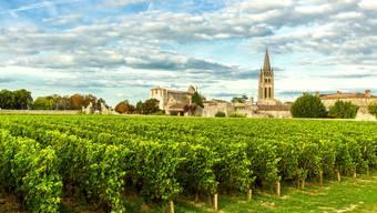 Die heile Welt trügt: Die Weinbauern im Bordeaux setzten bereits seit Jahrzehnten massiv Herbizide, Fungizide und Insektizide gegen Unkraut, Pilze und Schädlinge ein.
