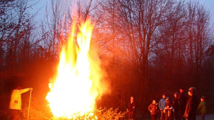 Unter der Aufsicht der Feuerwehr werden bei der Waldhütte in Oberwil- Lieli dürre Christbäume verbrannt – die Flammen lodern hoch. th