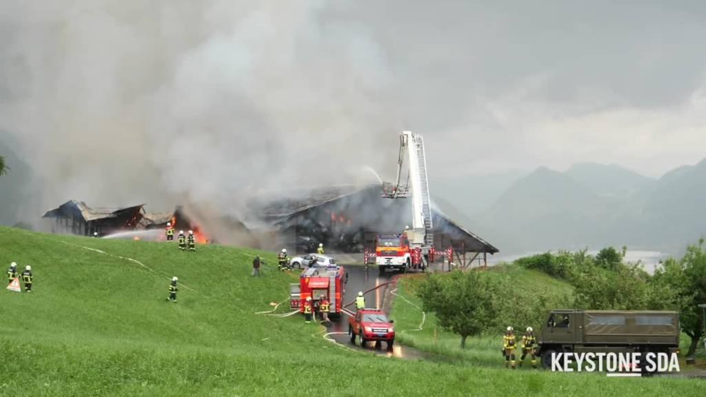 Brand in Stall ausgebrochen – Feuerwehr und Polizei im Einsatz