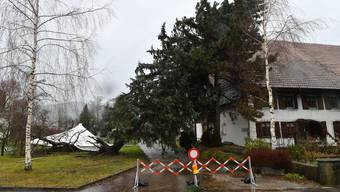 Burglind-Sturmschäden in der Region Olten, am 4, Januar 2018