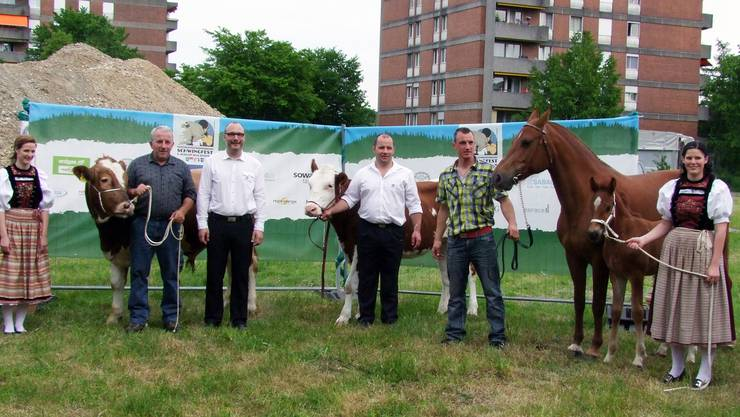 OK-Präsident Hugo Schumacher (3. von links) mit Ehrendamen präsentiert mit Helfern die Lebendpreise «Benno» (Muni), «Gasolina» (Rind) und «Bob» (Fohlen).